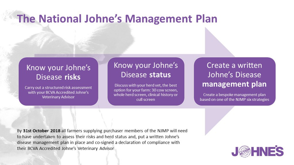 Infographic_know your risk, status & management plan